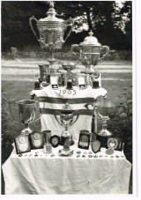 <h5>Trophy Collection</h5><p>Taken 1963 in the family garden.</p>